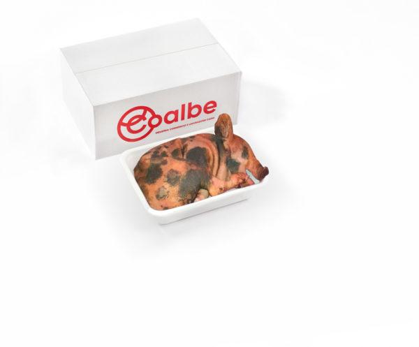 Coalbe - Box Maialetto Sardo - Acquista ora